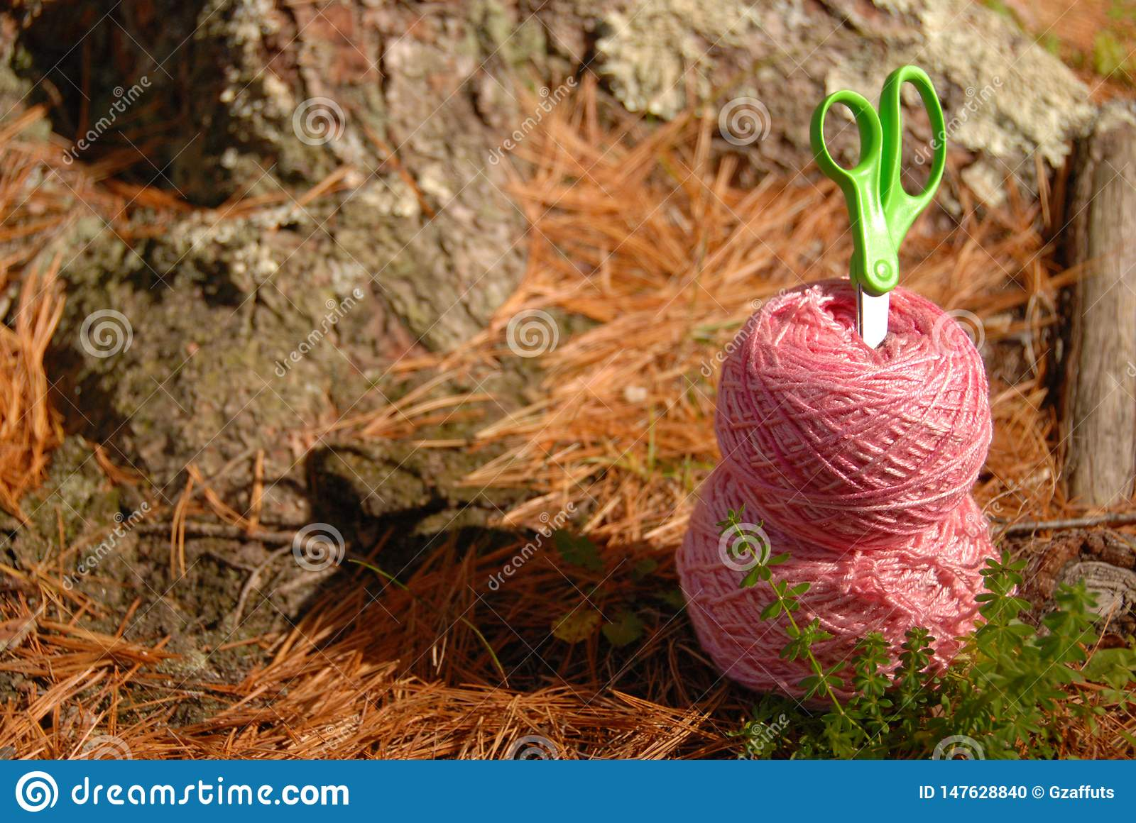 Pink yarn and green scissors on forest floor