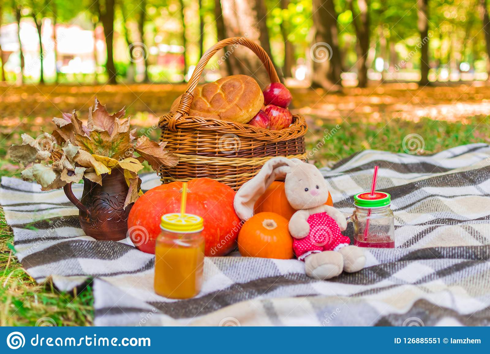 Pinkin w naturze łozinowy kosz na szkockiej kraty szkockiej kracie wokoło żółtego ulistnienia, napojów, bani i jabłek, bochenek c