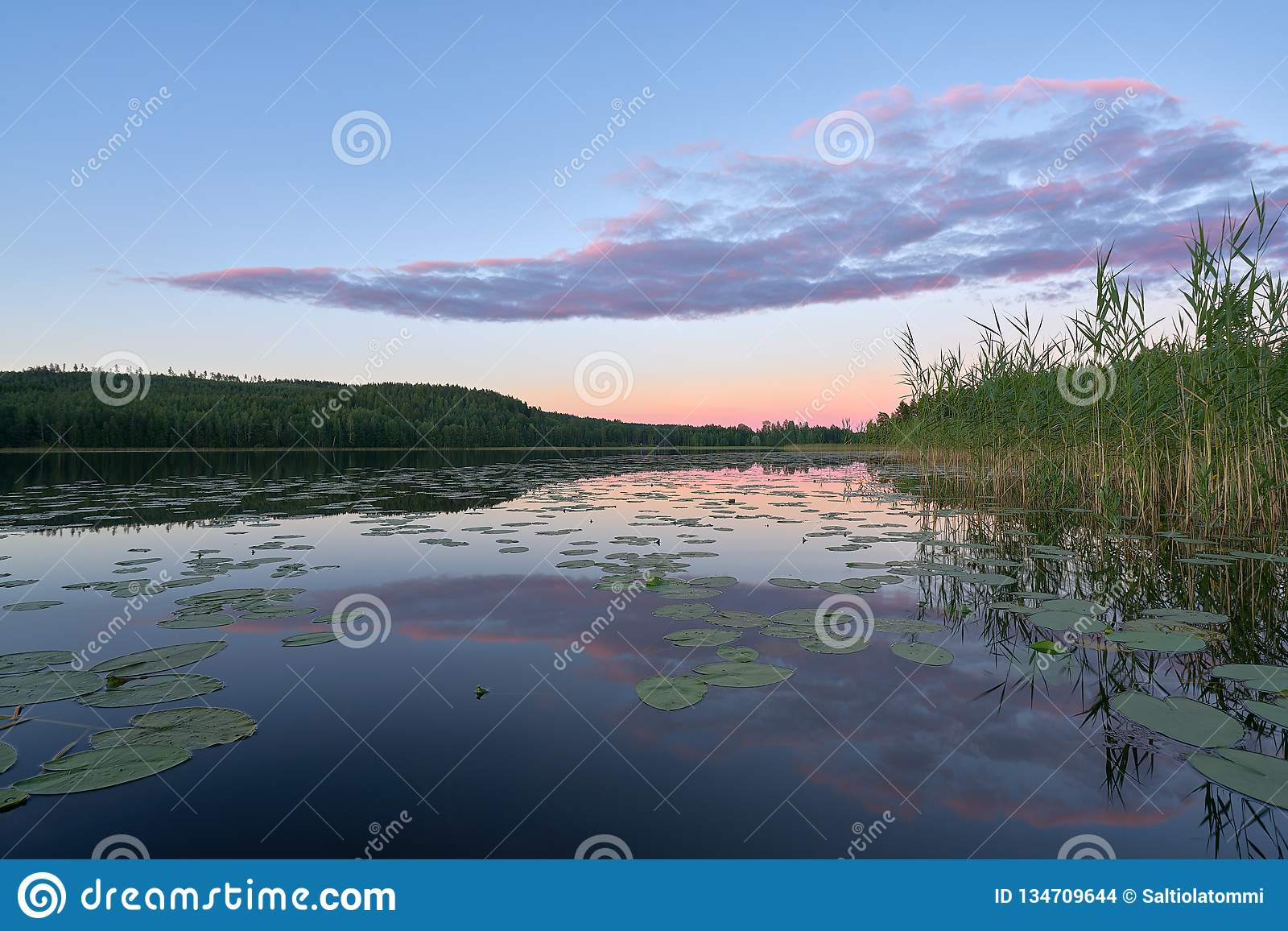 Pinkish Relfections on a lake