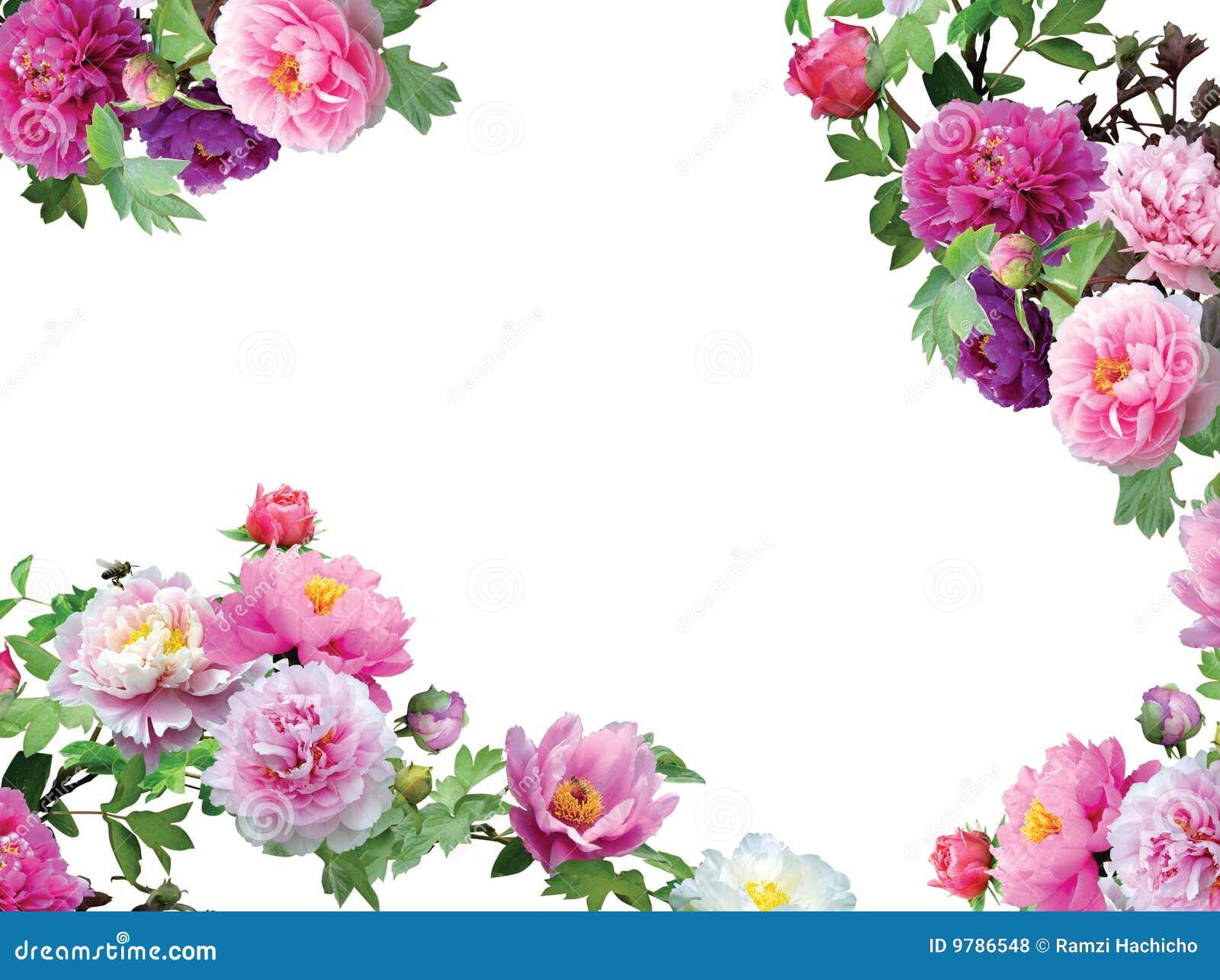 the arrangement free pdf charlotte byrd