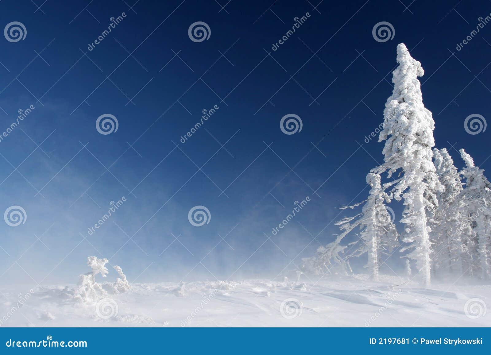 Pinnacle of mountain