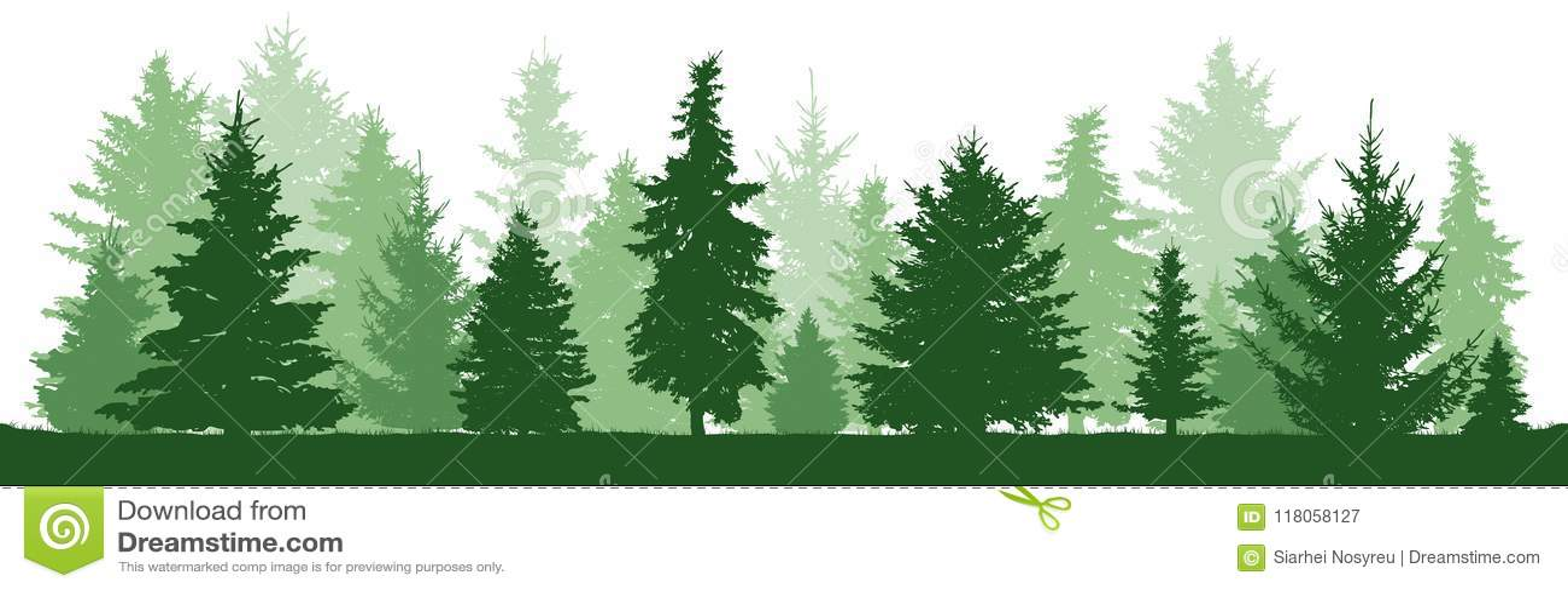 Pino de los árboles, abeto, picea, árbol de navidad Bosque conífero, silueta del vector