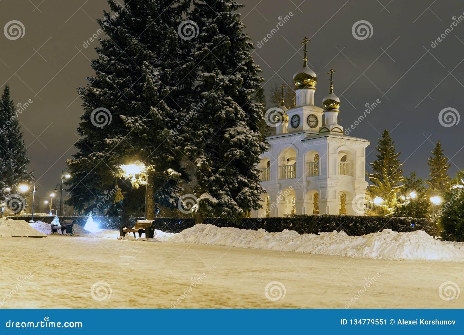 Pins de Noël en hiver dans la ville de nuit