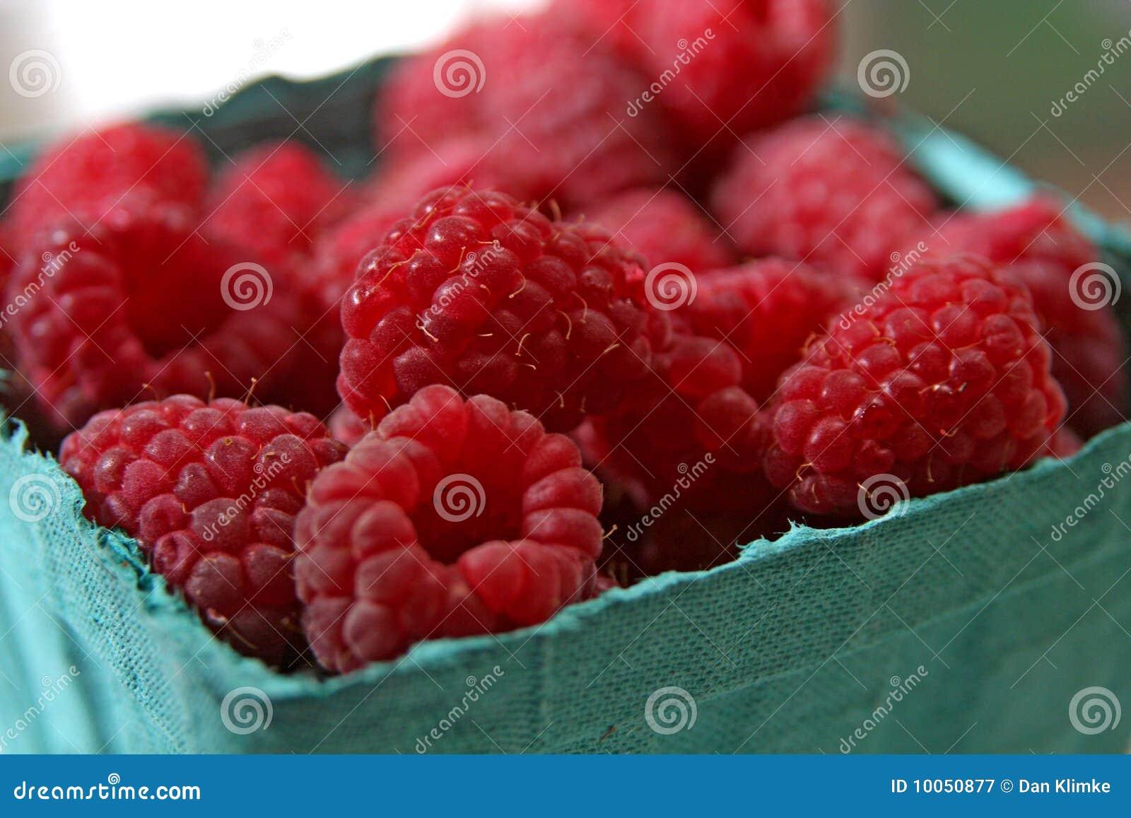 Pinta de Rashpberries vermelho