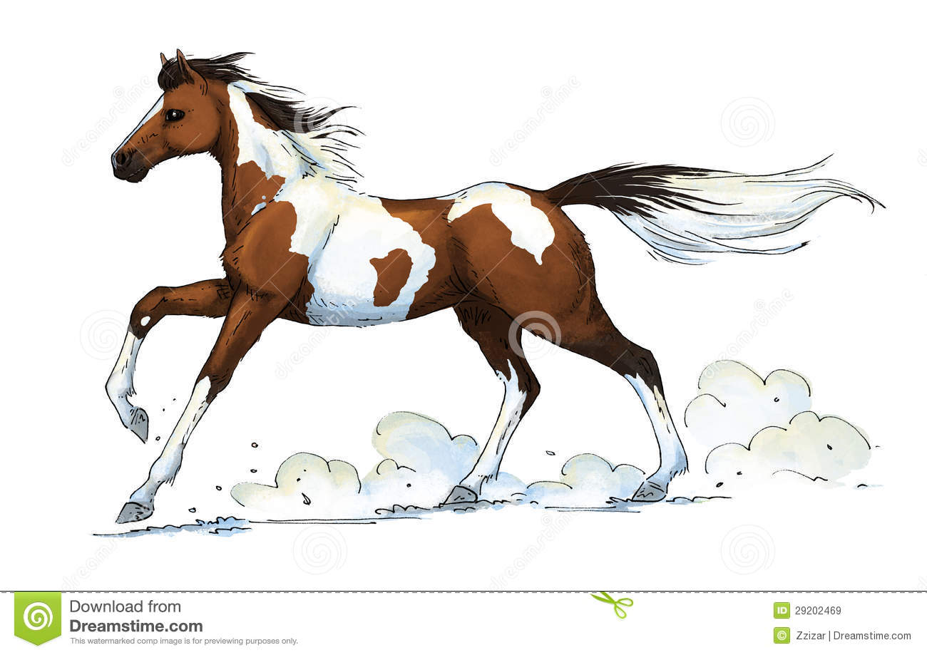 pinto horse gallop royalty free stock images image 29202469 seahorse clipart freeware black and white seahorse clip art blue
