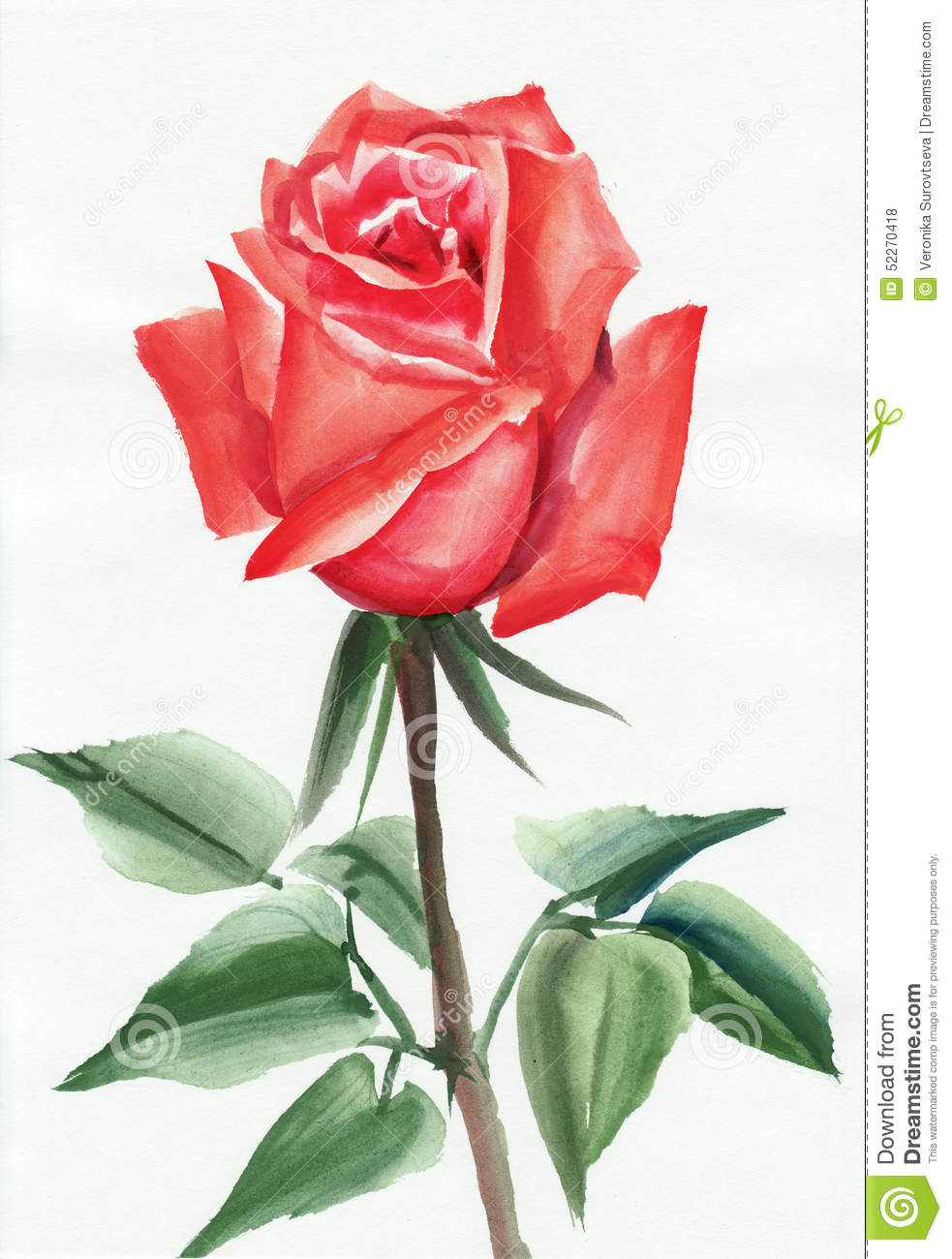 Rosa pintura images galleries with a for Colore de pintura