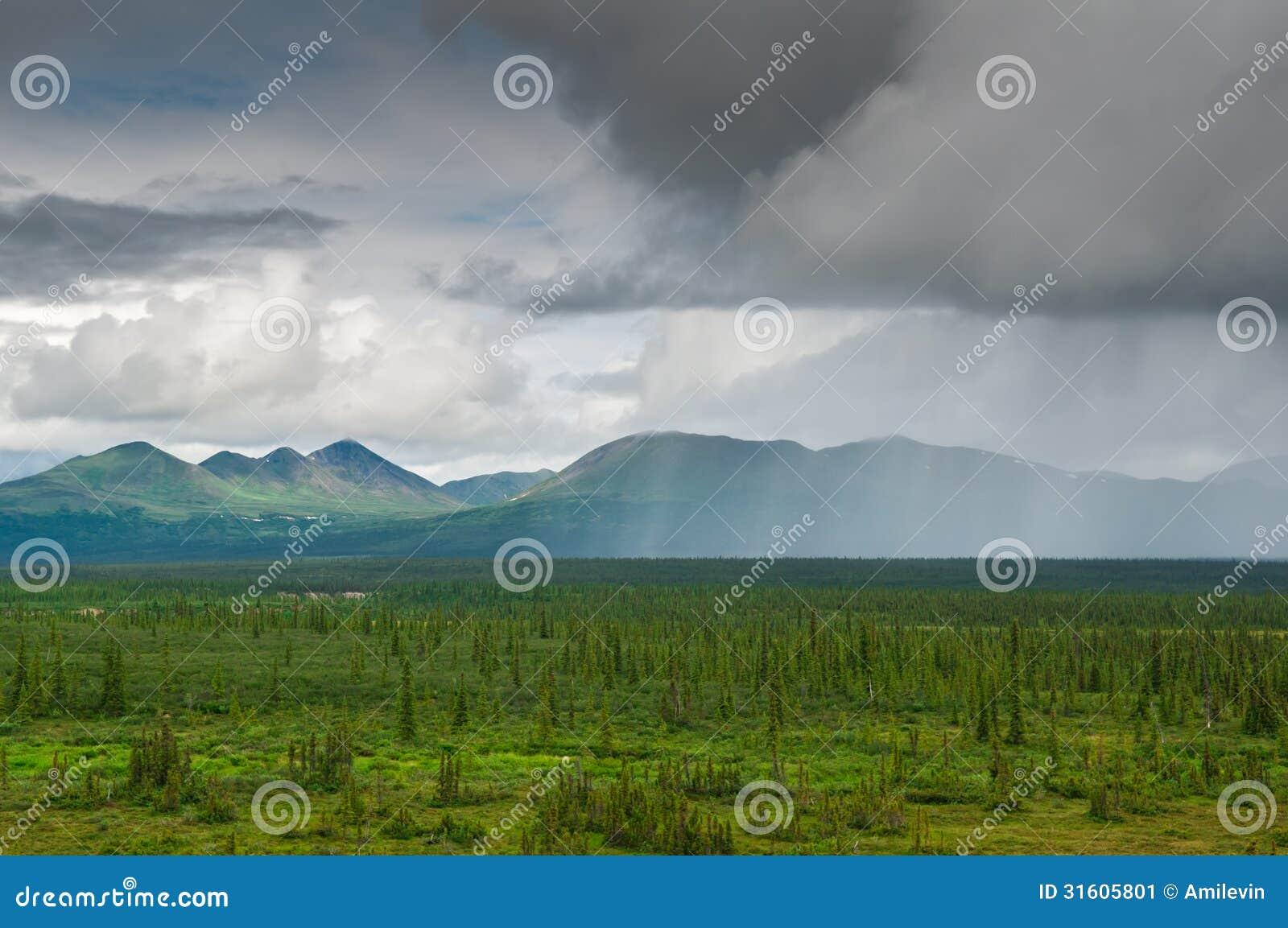 Pioggia d Alasca