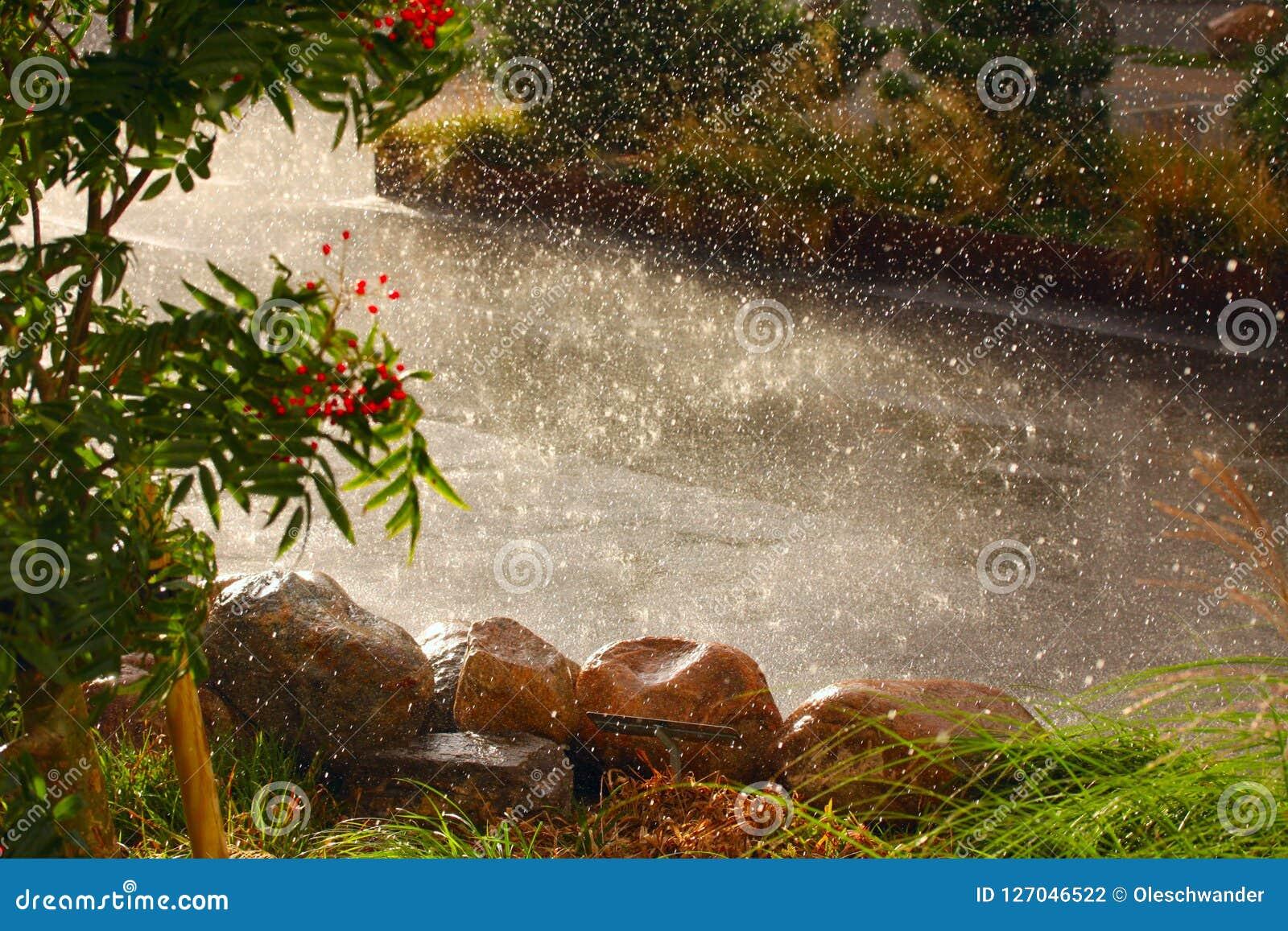 Piova le gocce dell acqua pesante e del tempo che cadono sulla terra