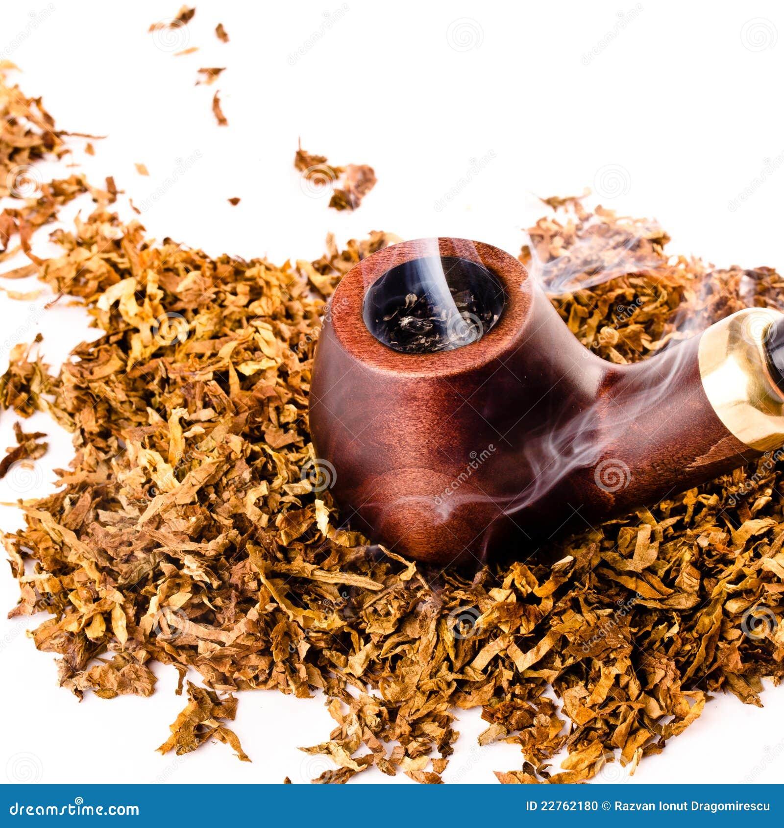 Pour ce 2 Octobre, qu'allez vous fumer?  Pipe-et-tabac-22762180