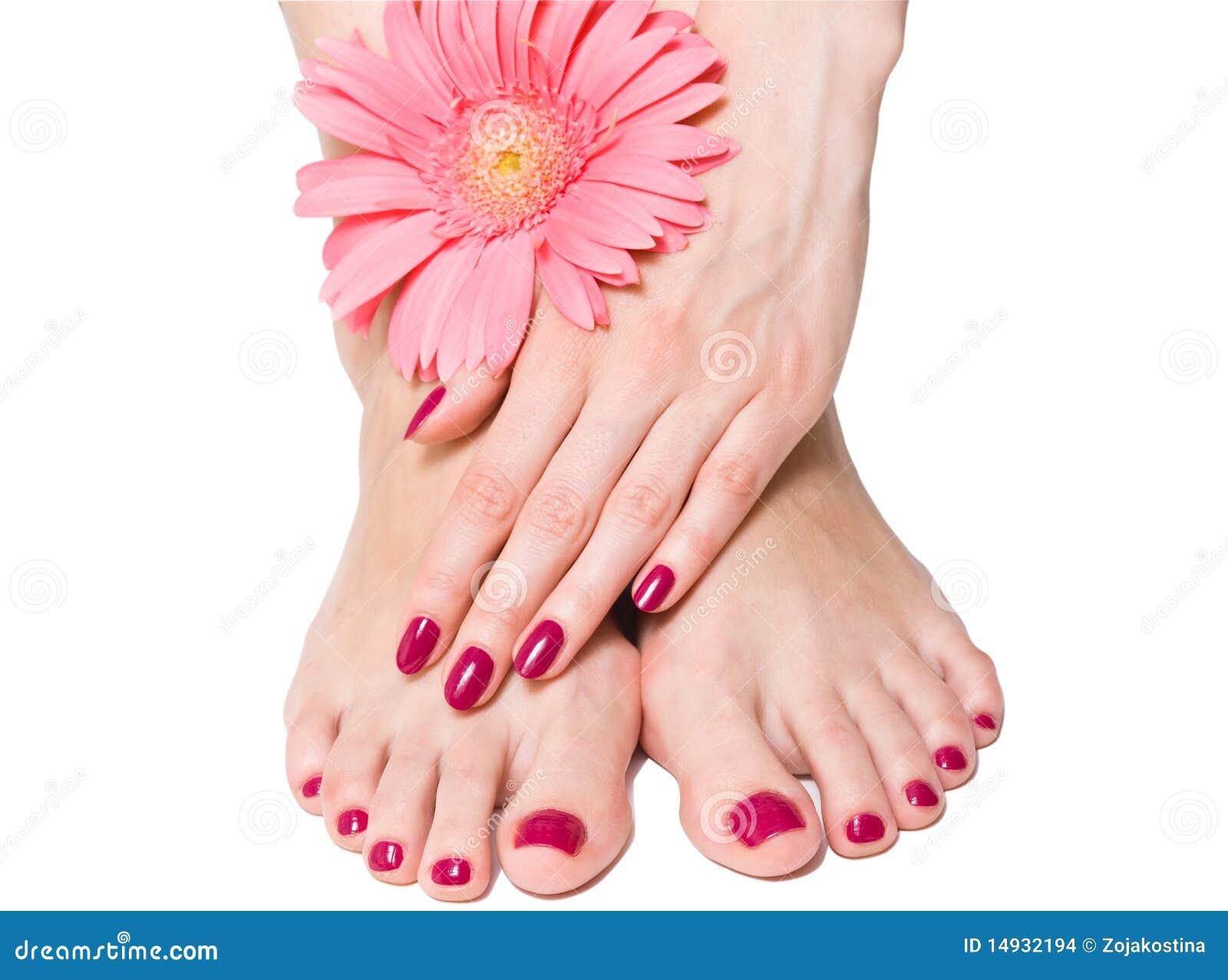 Imagenes de archivo: Pique la manicura y el pedicure con la flor