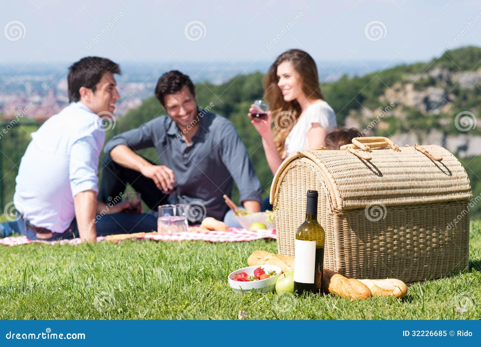 Download Piquenique Do Verão Com Amigos Imagem de Stock - Imagem de felicidade, alimento: 32226685