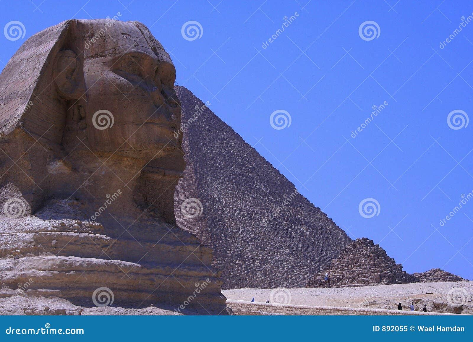 Piramidy egiptu sfinks