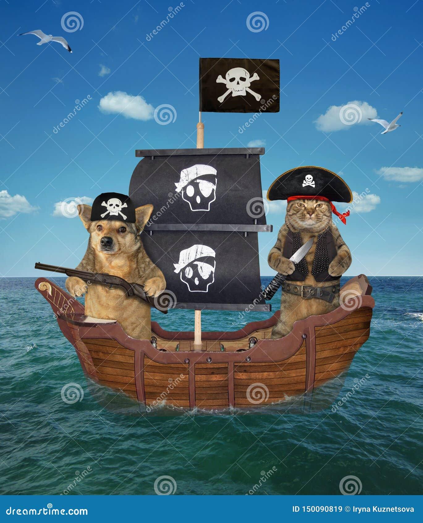 Pirate de chien et de chat sur le bateau