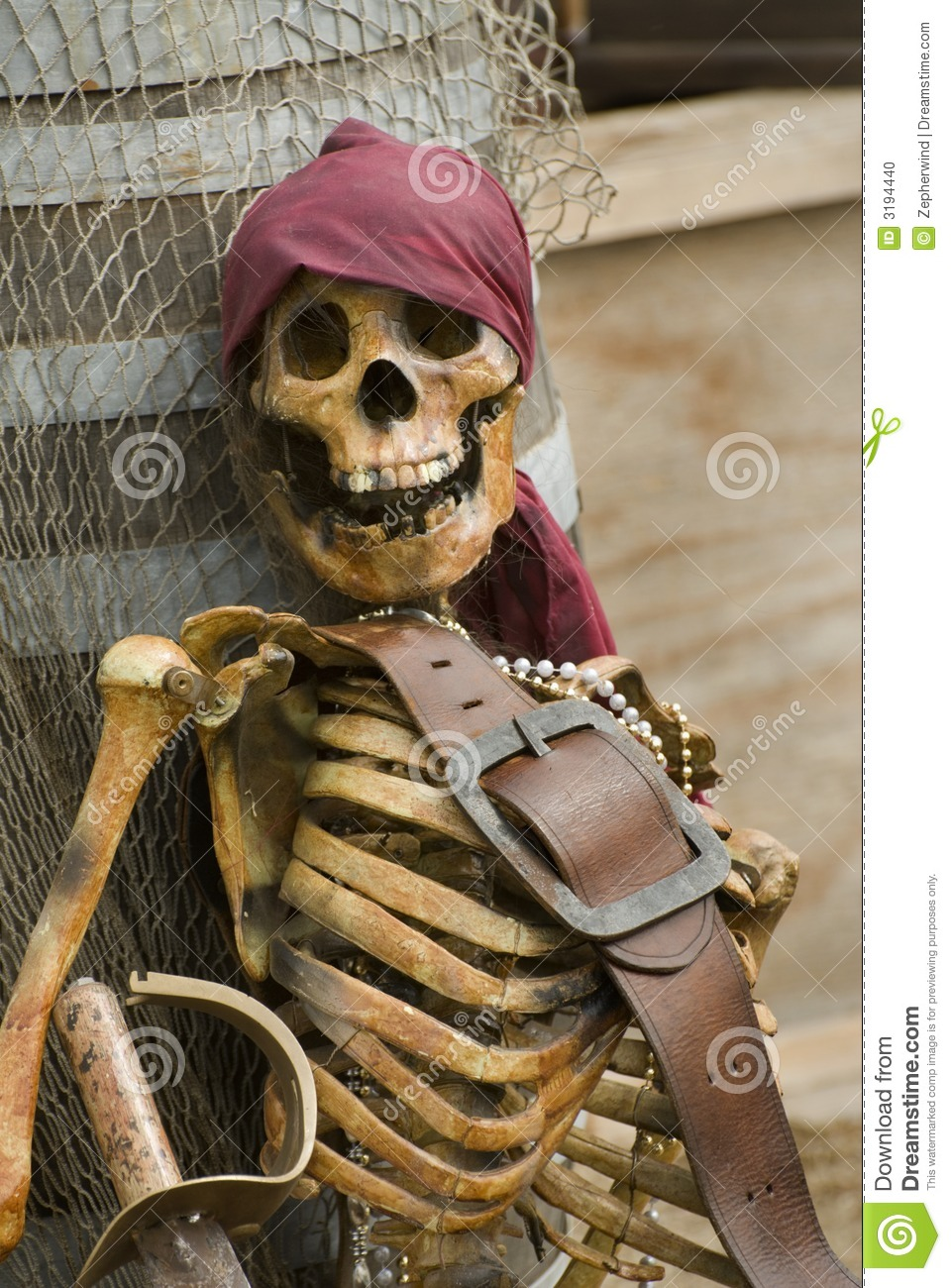 Pirate Skeleton Stock Photo Image Of Corpse Face