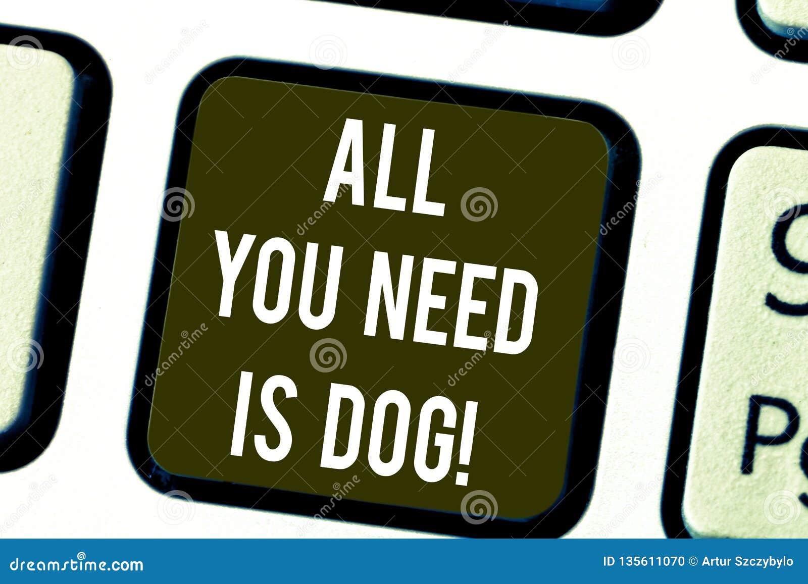 Pisać nutowym seansie Wszystko Jest Psi Ty Potrzebujesz Biznesowy fotografii pokazywać Dostają szczeniaka jest szczęśliwych z rod