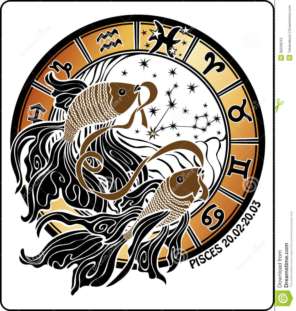 b9cd05a0f Two gold fish hold mouth tape behind them are symbols of all zodiac signs  Horoscope circle. On a white background.Graphic Illustration.
