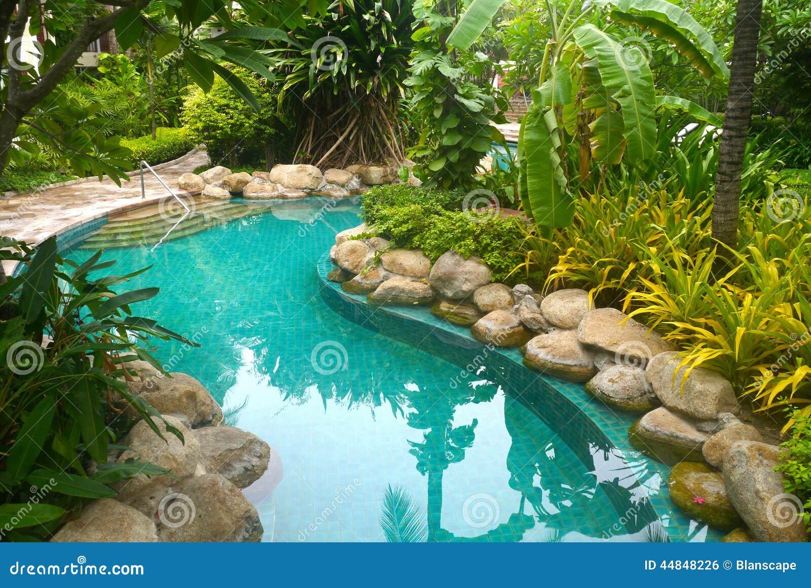 Piscina com decora o do jardim foto de stock imagem for Piscina e maschile o femminile