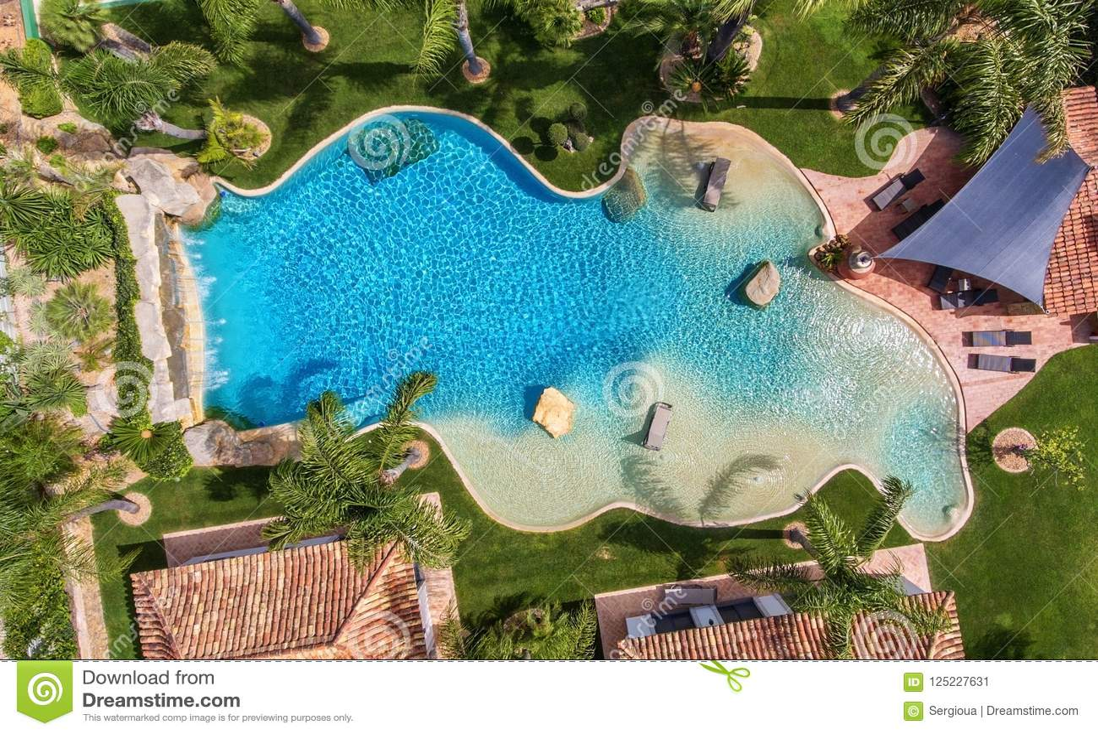 Piscina decorativa original en el jardín con las palmeras, visión aérea