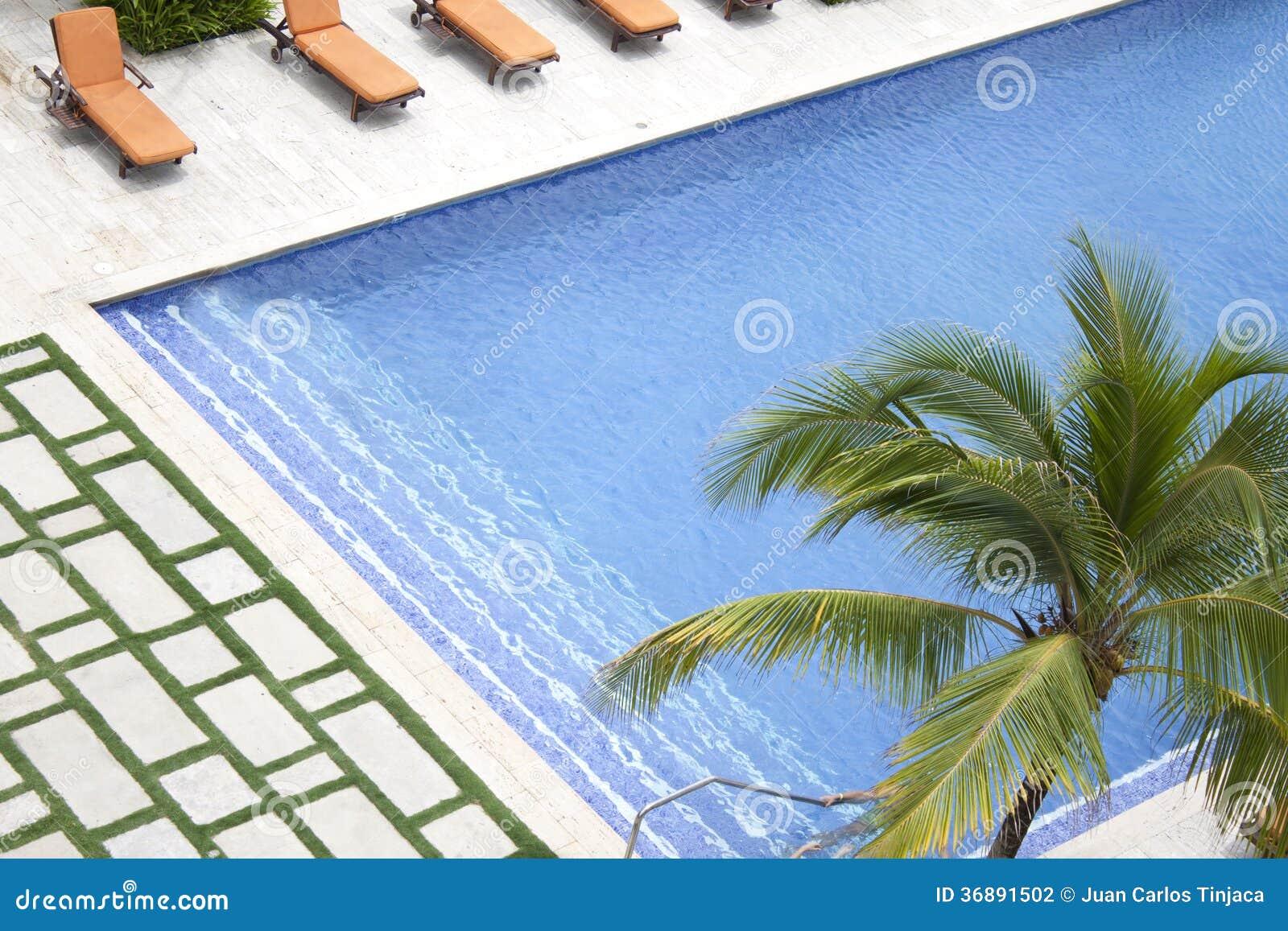Download Piscina dell'hotel fotografia stock. Immagine di palma - 36891502