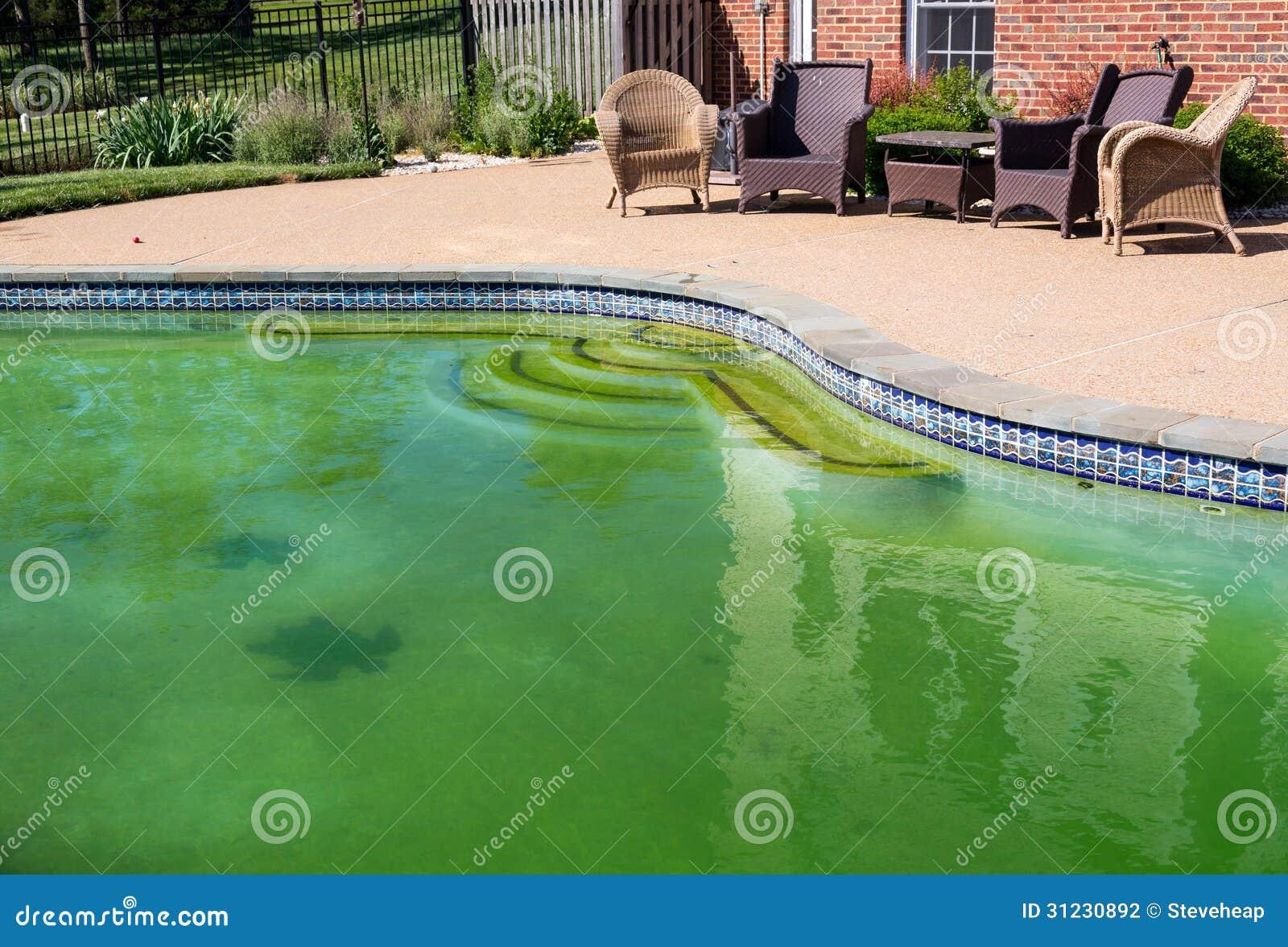 Piscina sujo e p tio do quintal - Business plan piscina ...