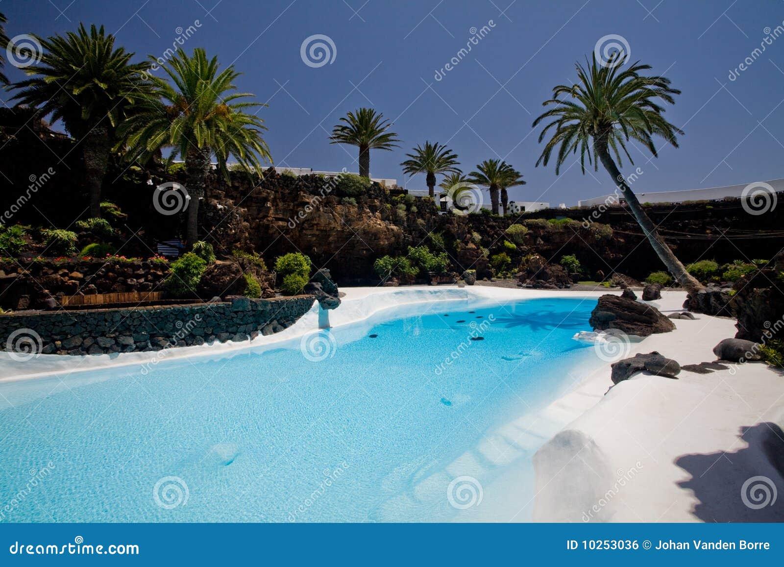 Piscina tropicale immagine stock libera da diritti for Piscina z