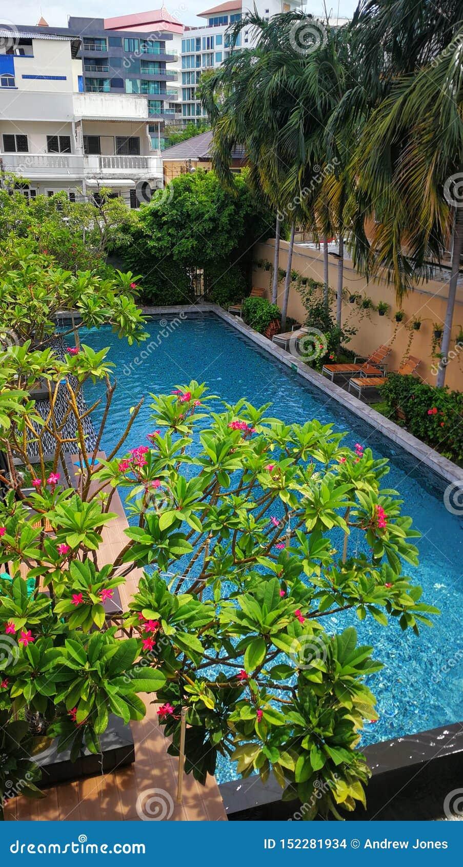 Piscine à un hôtel en Thaïlande