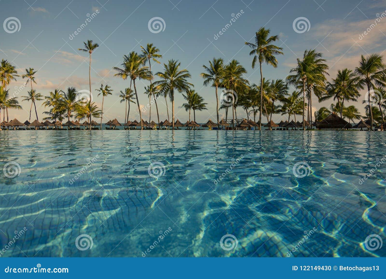 Piscine avec des palmiers près de l océan pendant un beau coucher du soleil