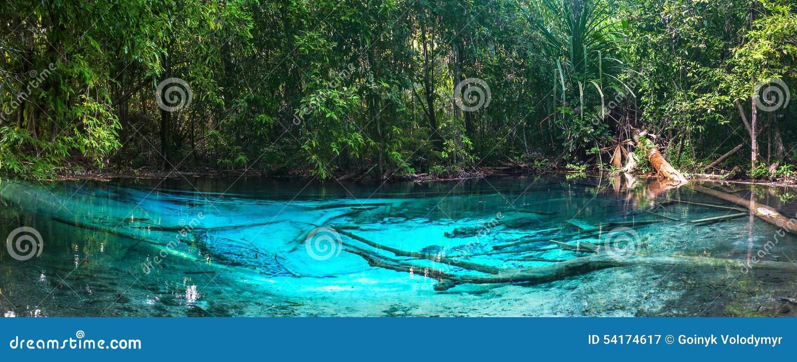 Piscine bleue verte krabi tha lande image stock image for Piscine a debordement thailande