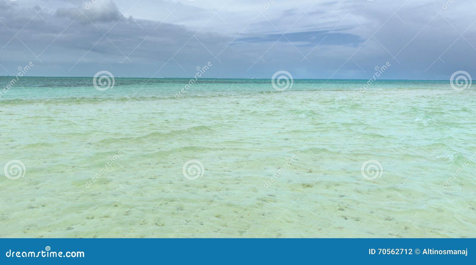 Piscine en nylon dans la profondeur d attraction touristique du Tobago du corail clair de bâche d eau de mer et de la vue panoram