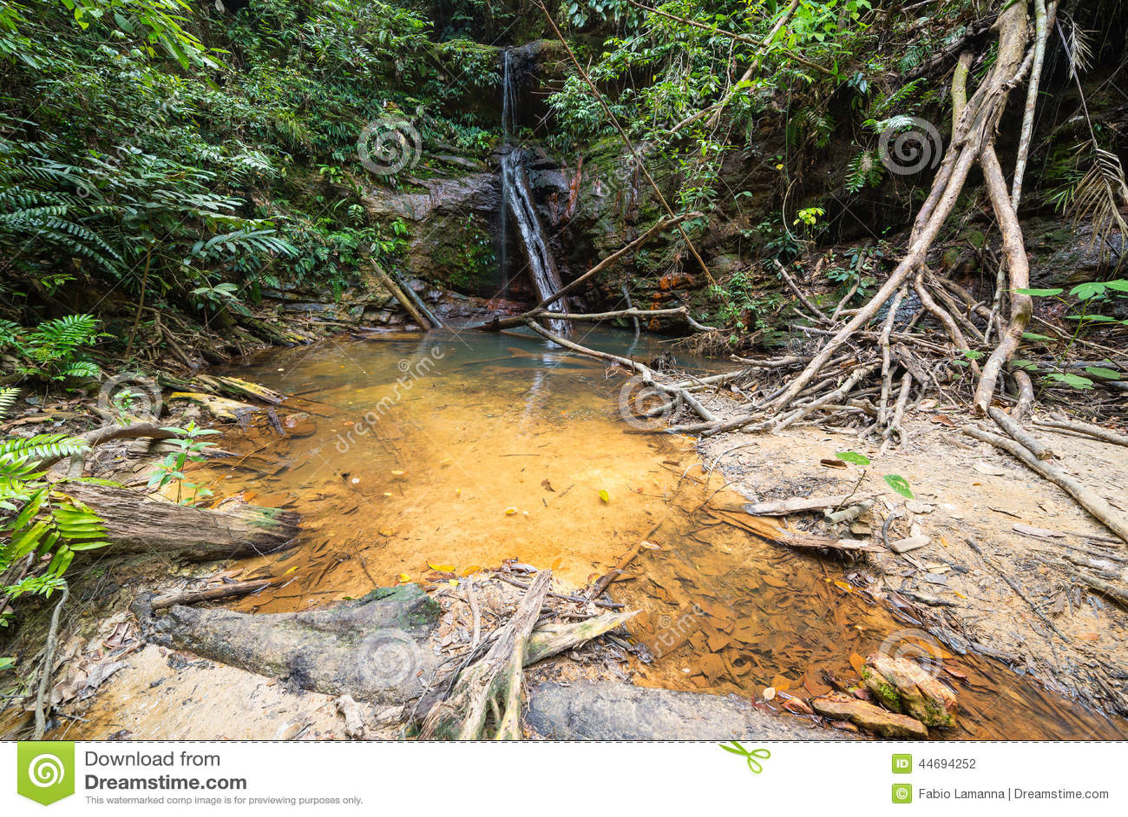 piscine naturelle 44