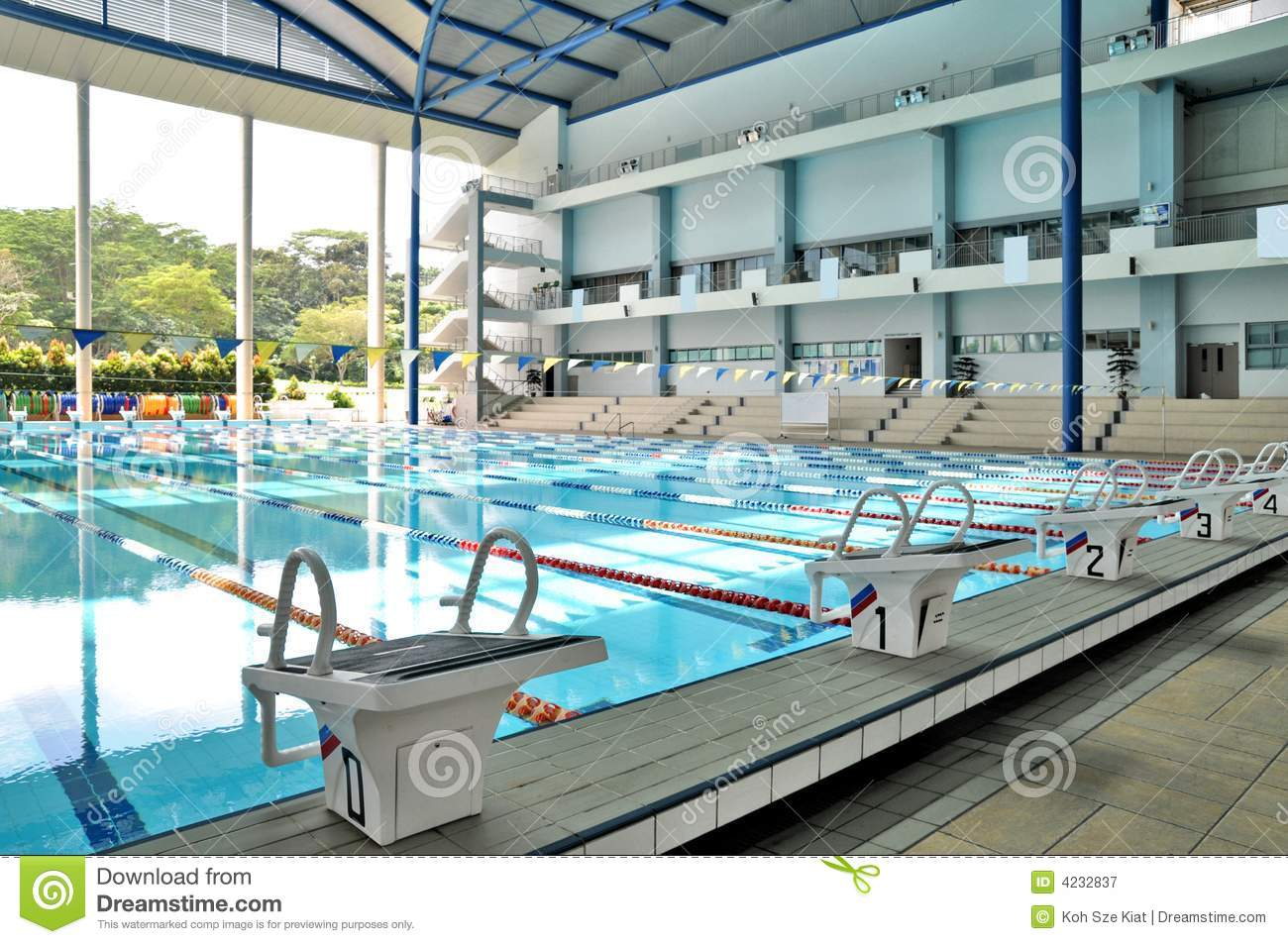 Piscine olympique d 39 int rieur de taille photographie stock libre de droits image 4232837 for Piscine d interieur