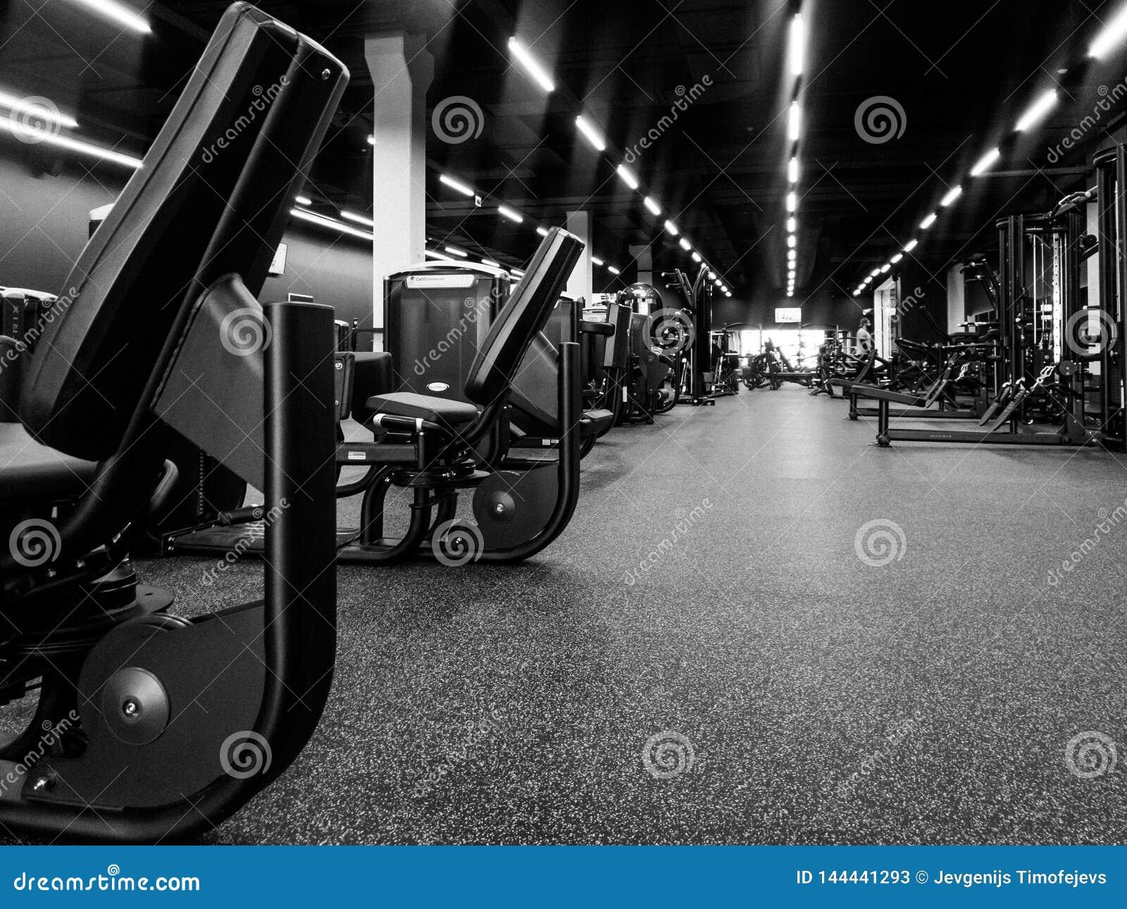 Piso de un gimnasio en un nuevo club de deporte