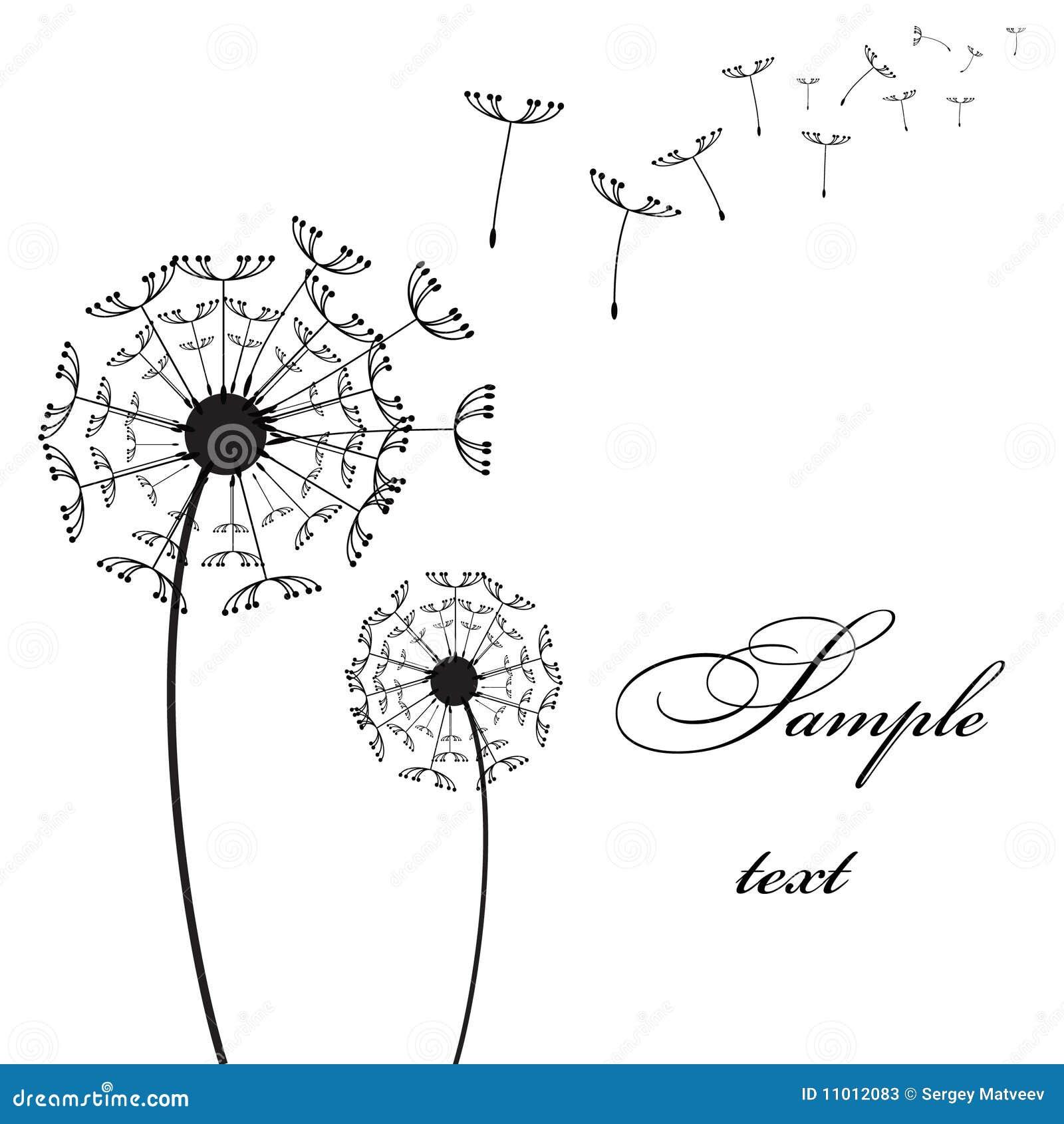 Pissenlit du vecteur deux illustration de vecteur - Dessin fleur pissenlit ...