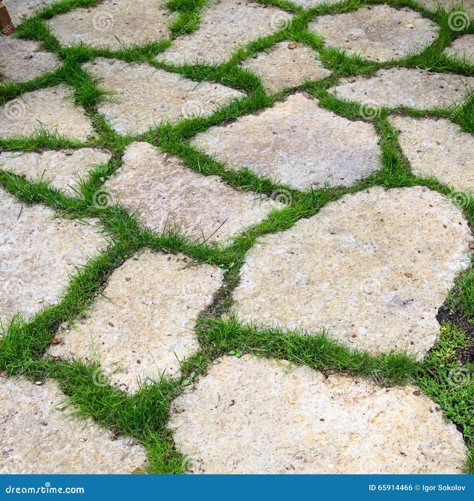 Losetas jardin isokit verde ccrculos de madera para - Losetas para jardin ...