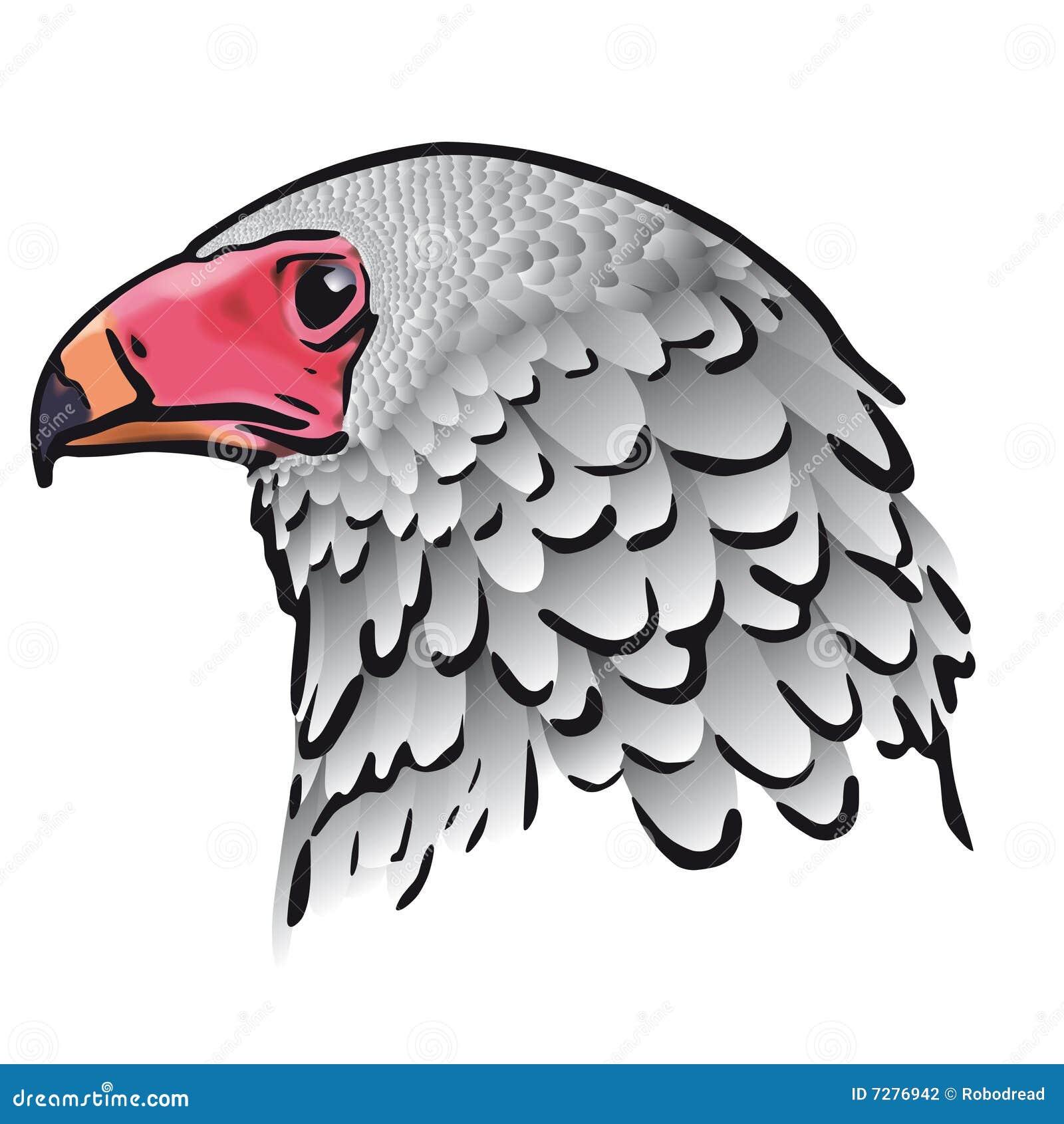Pista del águila (vector)