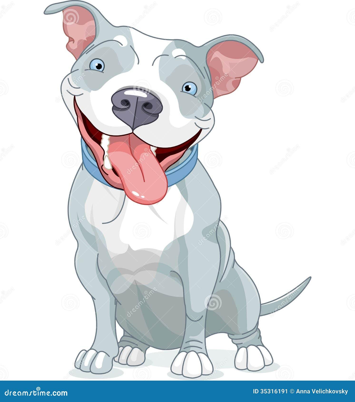 pit bull dog stock image image 35316191
