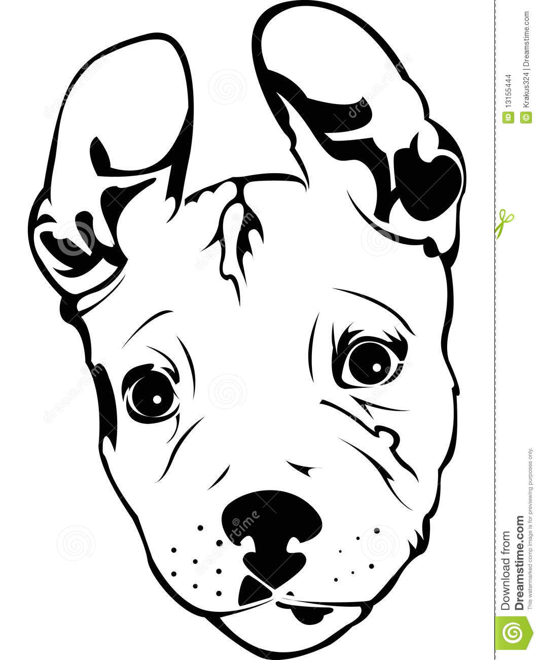 Pitbull Tattoo Coloring Pages