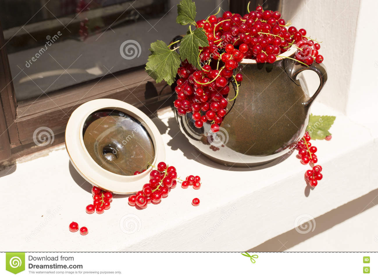 Pitcher/jug of redcurrant on a direct sunlight on a window