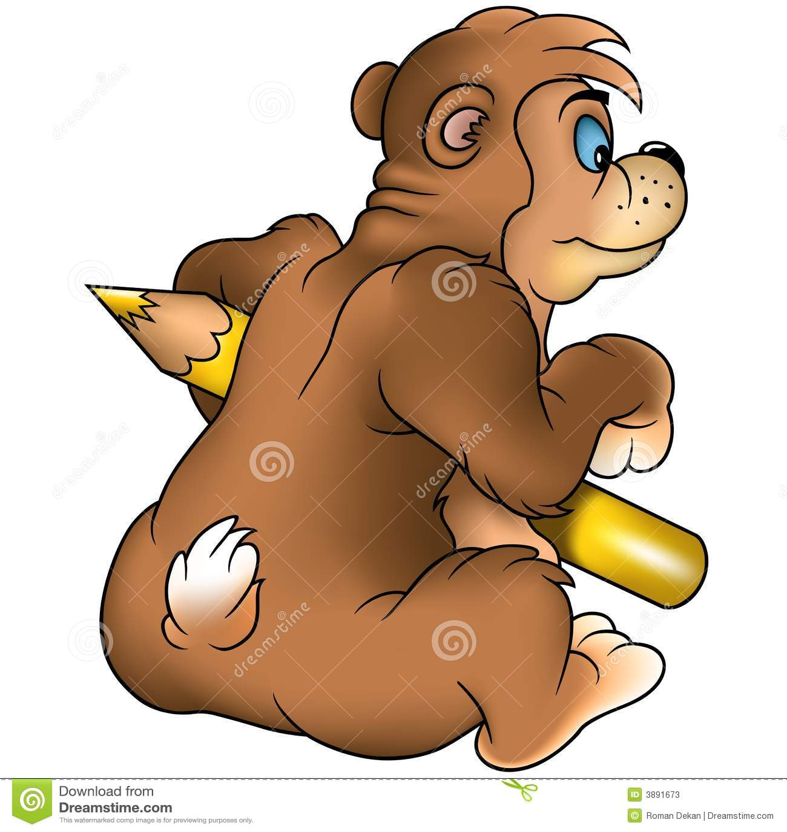 Pittore dell orso di Brown