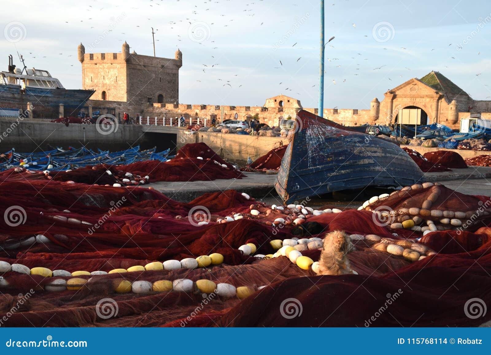 Pittoresk sikt av färgrik och vibrerande gammal Essaouira port, Sqala du Port, ett defensivt torn, fiskeporten