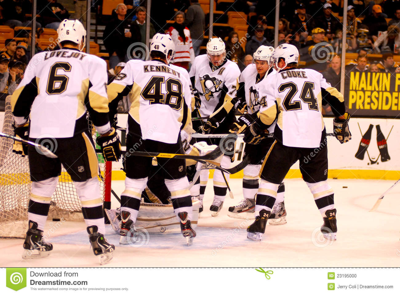 the pittsburgh penguins and the national hockey league The pittsburgh penguins are an american professional ice hockey team based in pittsburgh, pennsylvania, that competes in the national hockey league (nhl) they are members of the league's metropolitan division of the eastern conference.
