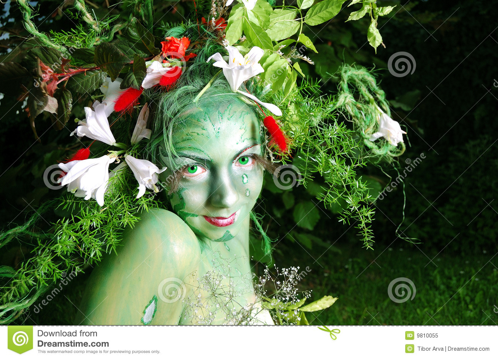 Pittura ambientale verde del fronte