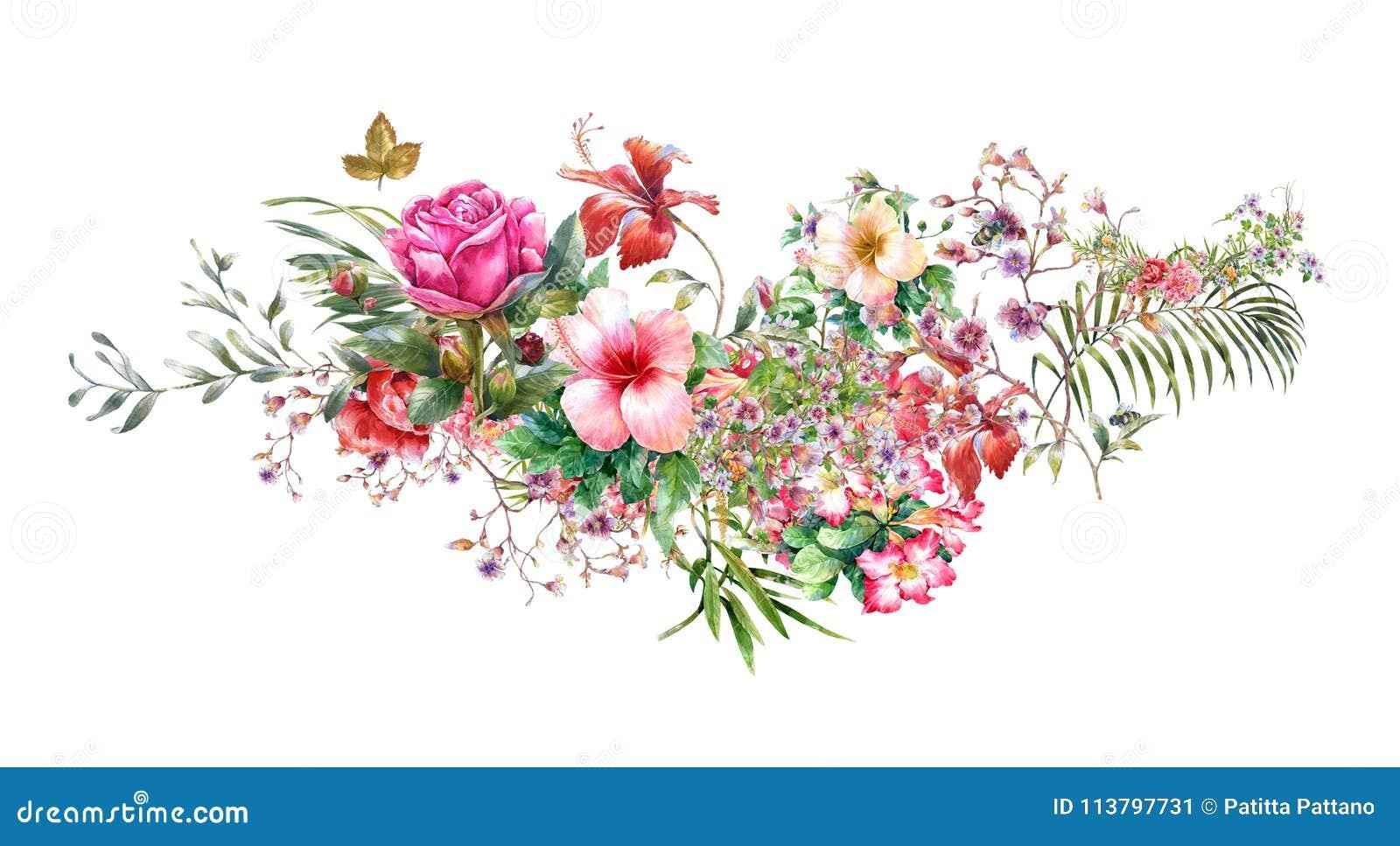 Pittura dell acquerello delle foglie e del fiore, su bianco