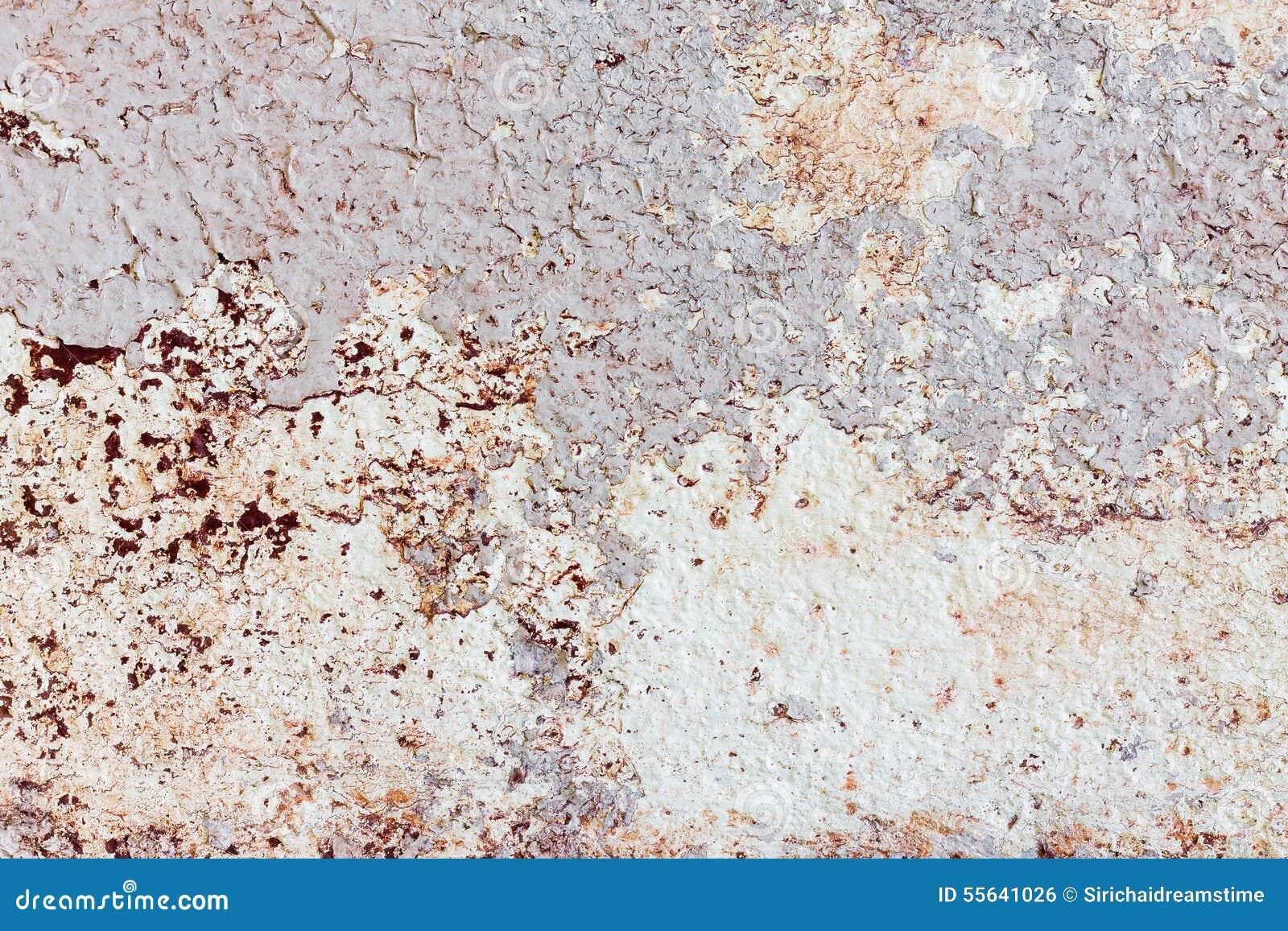 Pittura Per Cemento : Pittura per uso interno sul fondo di struttura dei mura di cemento