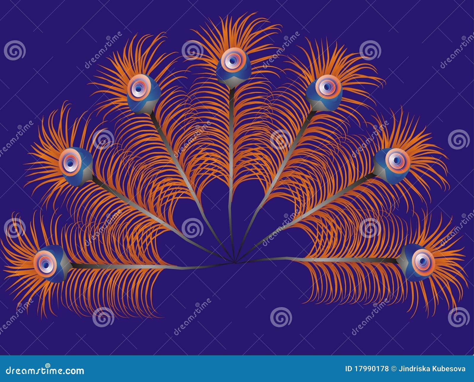 Piume del pavone illustrazione di stock illustrazione di - Immagini pavone a colori ...