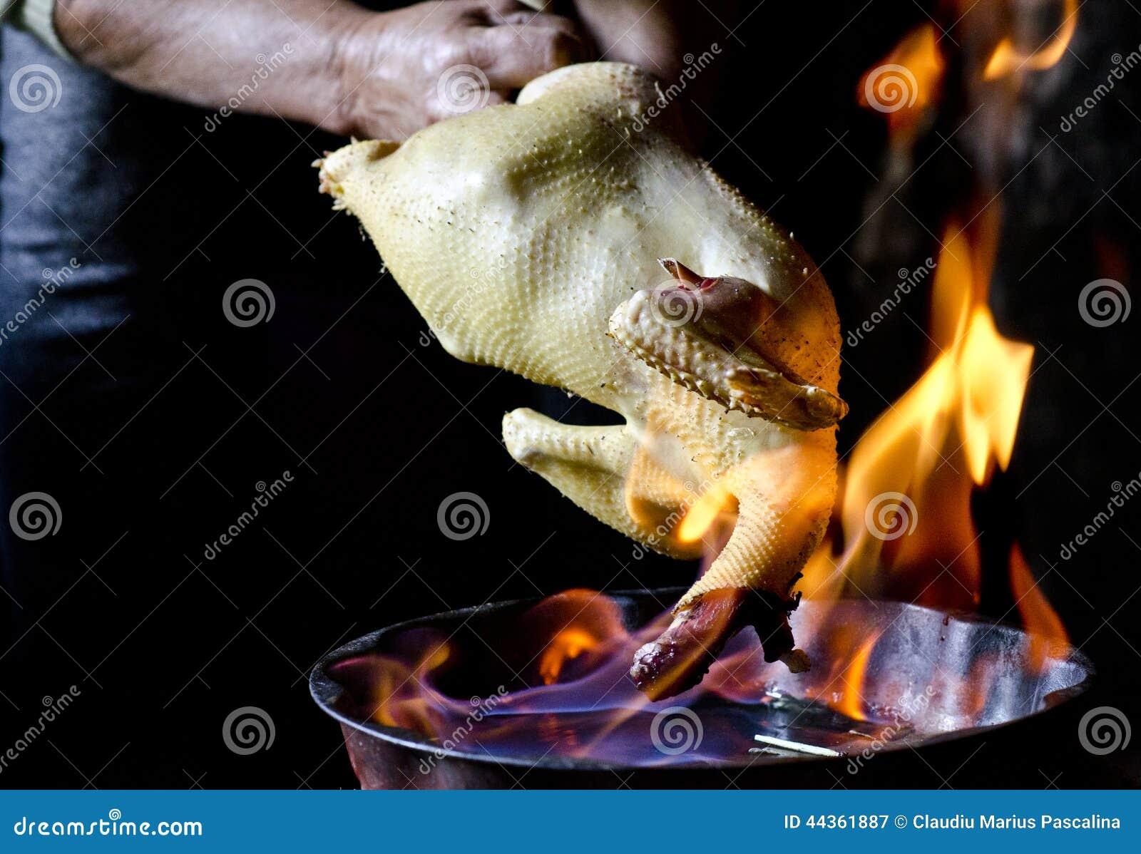 Piume del pollo