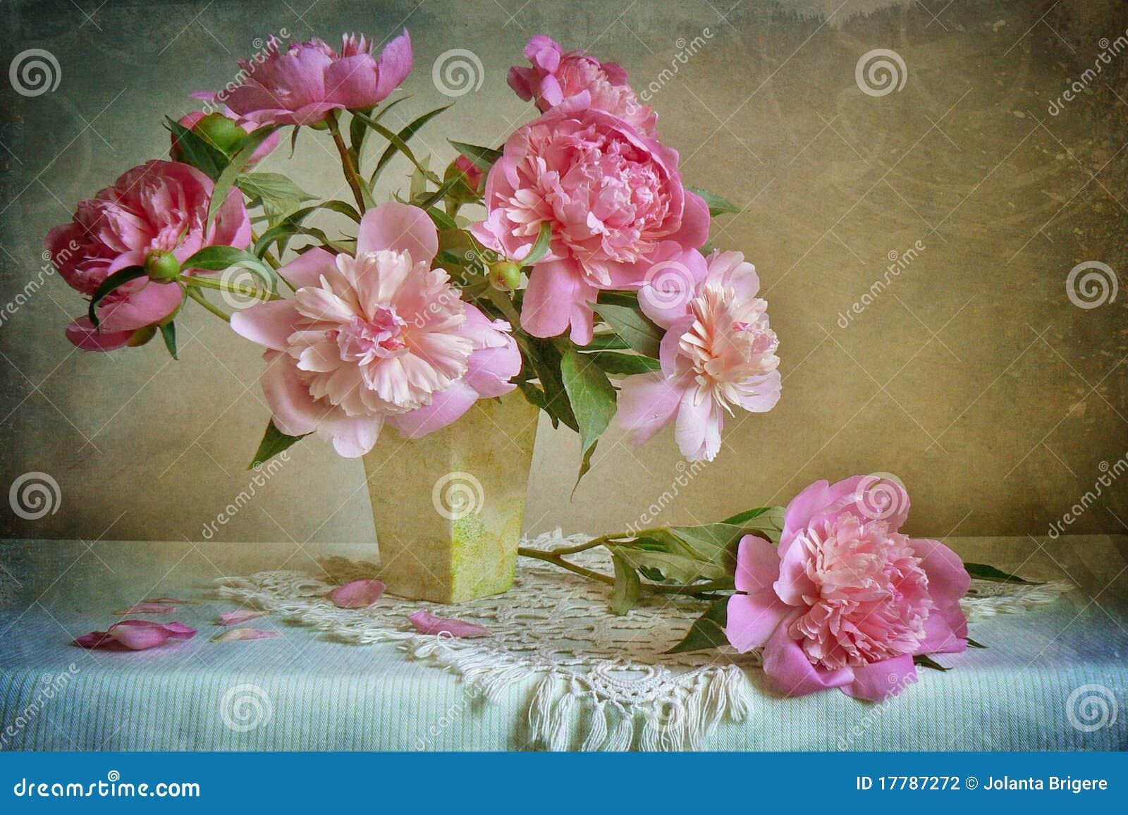 pivoines roses photo stock image du table chaleureux 17787272. Black Bedroom Furniture Sets. Home Design Ideas