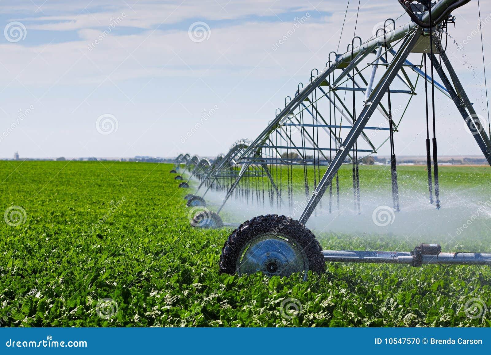 Pivot d irrigation