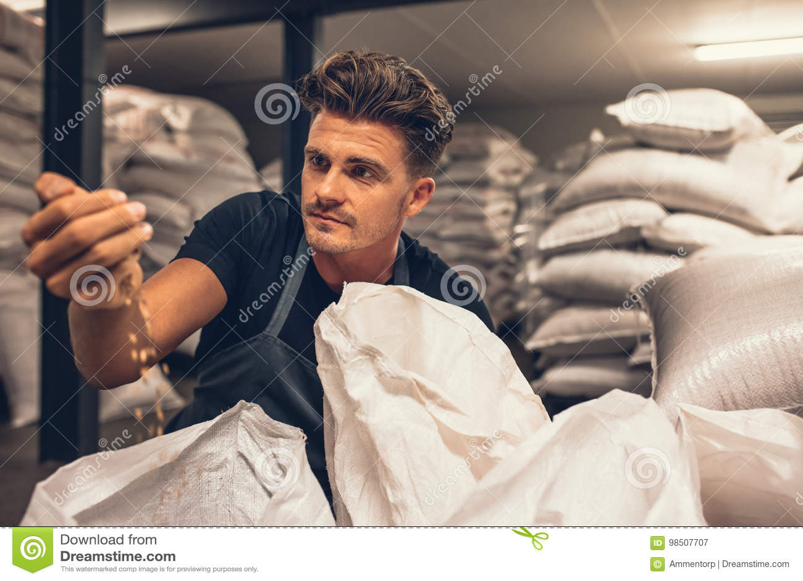 Piwowar egzamininuje jęczmienia przy browar fabryką
