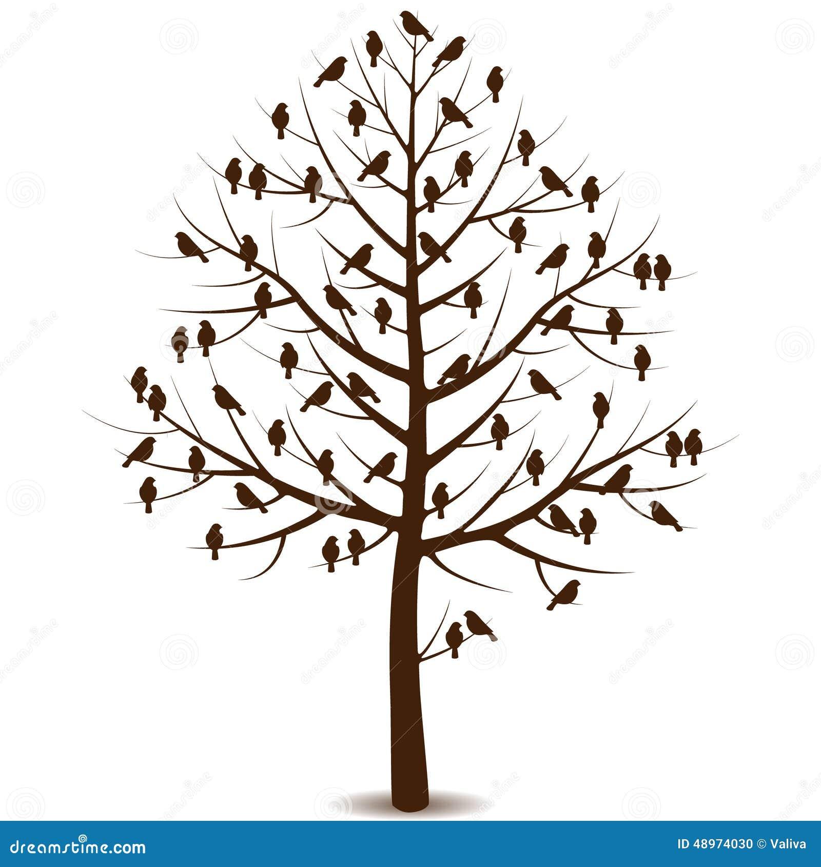 P jaros en ramas del rbol ilustraci n del vector imagen - Ramas de arboles ...